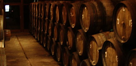 Our extensive lambic beer maturing cellar. Or, rather, the one at Cantillon in Brussells.