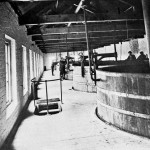 McCardle Moore & Co Ltd, Dundalk: One Corner of the Fermenting Room. (Each vessel contains 500 barrels.)
