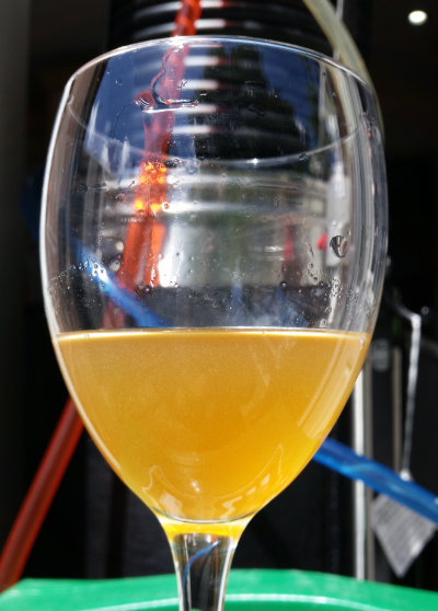 Boddington's clone just before fermenting.