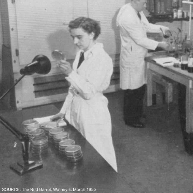 A young woman in a laboratory.