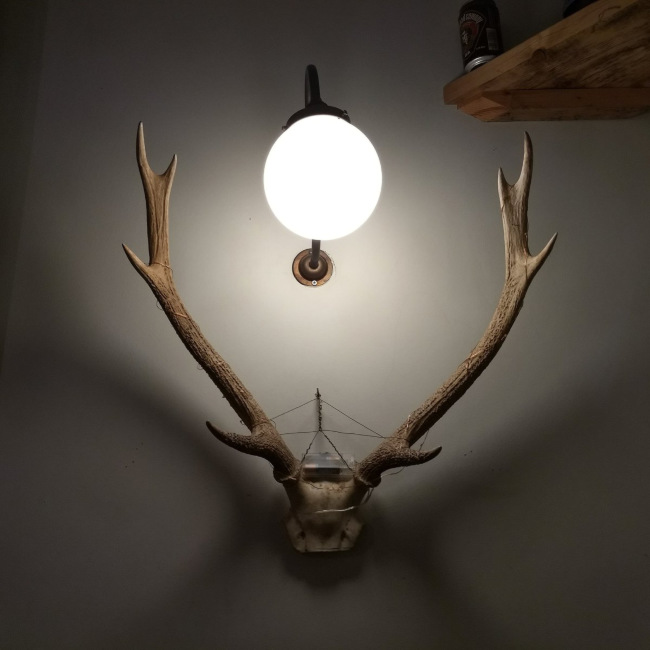 Antlers on the wall at the Barley Mow.