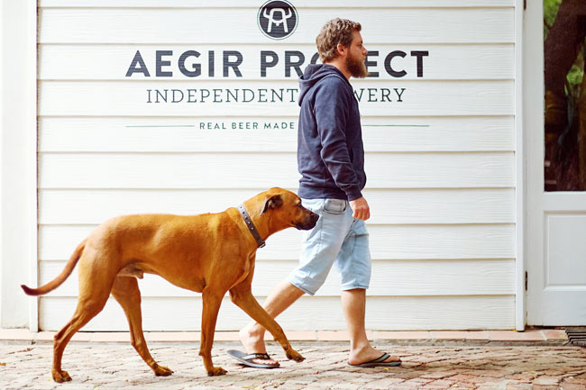 Aegir Project