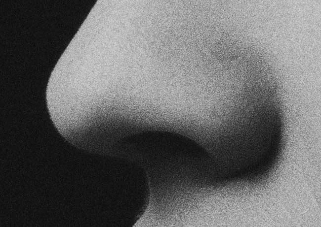 A nose.